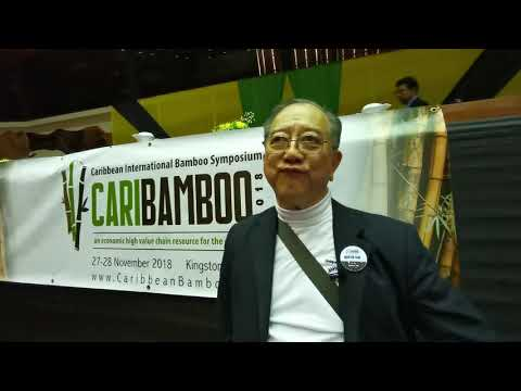 "Martin Tam on Bamboo: ""The age of bamboo must return"""
