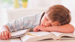 Как приучить ребенка делать уроки самостоятельно, быстро и с желанием?