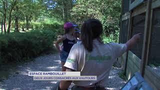 Espace Rambouillet : deux jours consacrés aux vautours