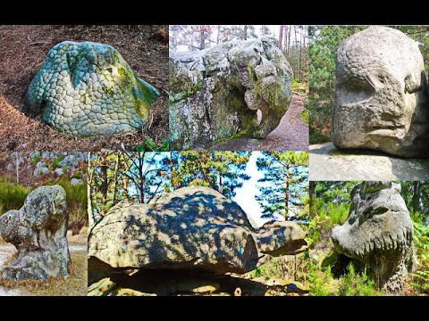Fossilized unidentified creatures in France