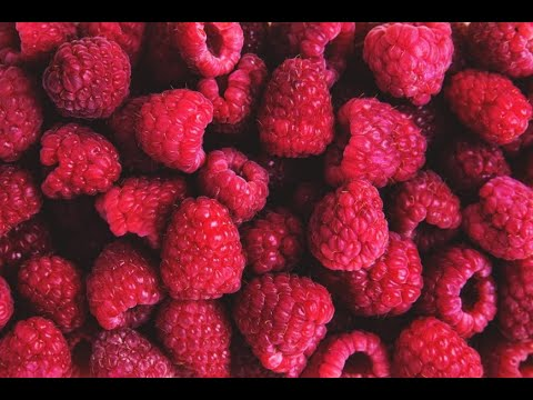 Raspberries 101-Nutrition and Health Benefits