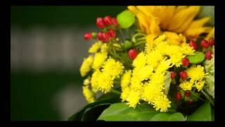 Доставка цветов и букетов по Киеву, Украине и миру. http://buket-express.ua/(, 2014-07-21T20:17:55.000Z)