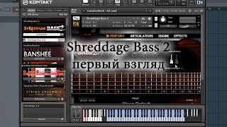 Shreddage Bass 2 - первый взгляд