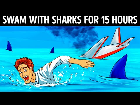 A Pilot Survived a Plane Crash And 15 Hours Among Hungry Sharks
