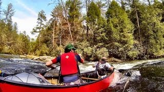 Canoe - Paddling The Cartecay River With My Dog (english Staffordshire Bull Terrier)