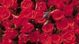 kırmızı güller-ilahi Resimi