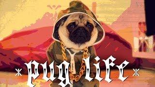 Onepiece Pug Life