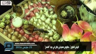 مصر العربية | البيض الملون