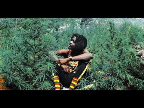 JAMAICA CANNABIS 2016   Everything about  Weed, Marijuana, Ganja Full Documentary HD ☮ FREEDOM TV
