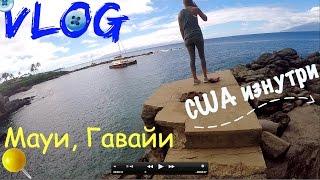 VLOG: Гавайи, остров Мауи. Пляж, Спуск на канате, Галереи, Еда. Отдых в США(Всем привет! В этом видео мы находимся на Мауи, острове посреди океана на Американской территории, штат..., 2015-11-20T07:56:10.000Z)