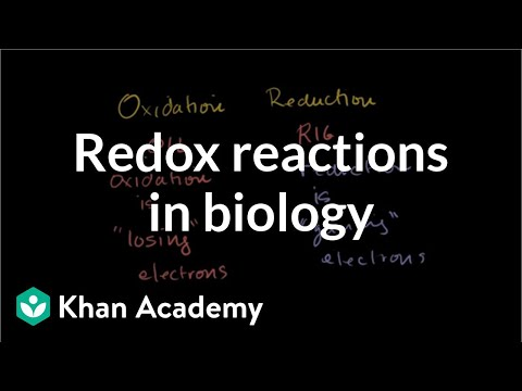 Oxidation and reduction review from biological point-of-view | Khan Academy