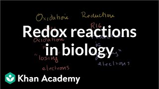 Oxidation and reduction review from biological point-of-view | Biomolecules | MCAT | Khan Academy