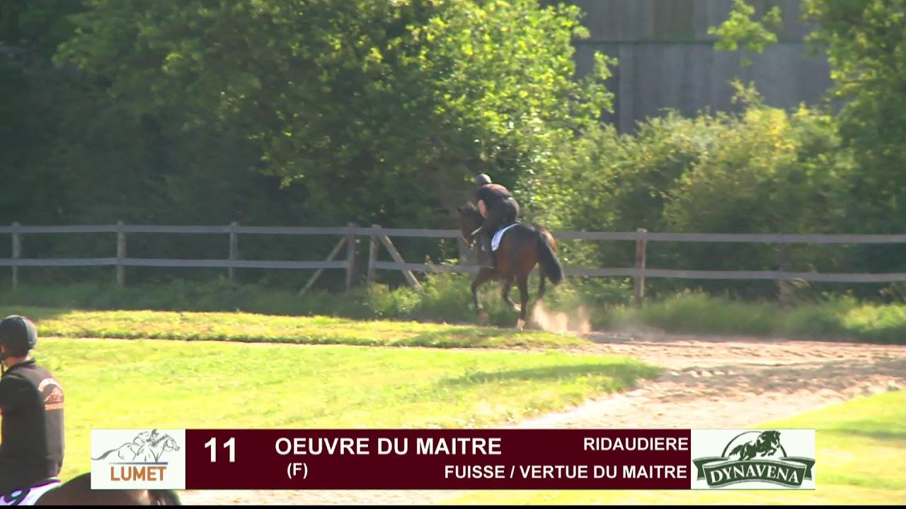 Maitre De L Oeuvre show lumet 2019 - obstacle : lot 11 - oeuvre du maitre