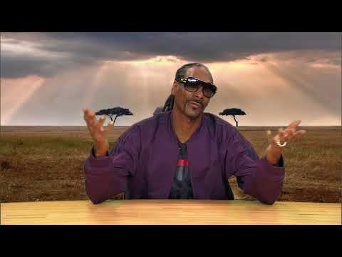 Snoop Dogg narrating animal footage : Tree Frogs