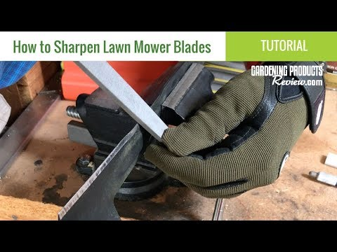 How to Sharpen Lawn Mower Blades (So Your Lawn Looks Great
