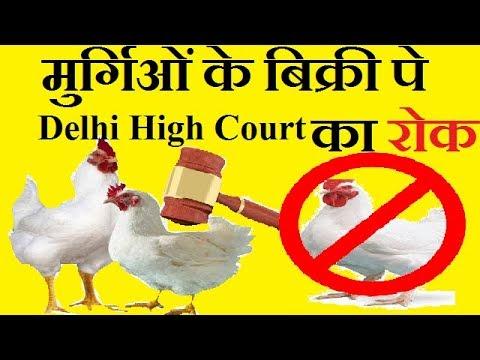 मुर्गिओं के बिक्री पे  Delhi High Court ने लगाया रोक ! Big Update Today