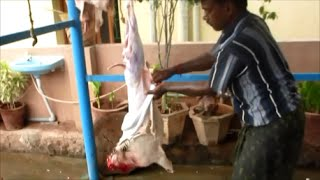 Slaughtering Of Goat