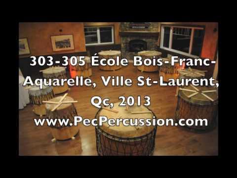 303 305 Ecole Bois Franc Aquarelle Ville St Laurent Qc 2013