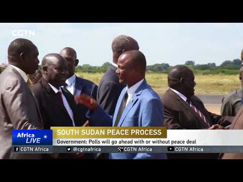 South Sudan vows to hold elections before the end of the year
