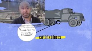 LUZ para el MEDIO AMBIENTE (VIDEO)