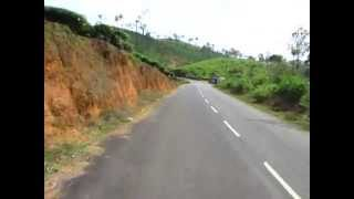 Biking thru Wayanad tea estates