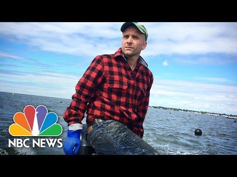 Food Forward: Making Kelp the New Kale | Mach | NBC News