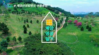 계양산성탐방로 여름풍경 [영상일기]썸네일