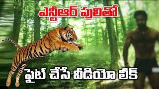 Jr Ntr RRR Movie Tiger Fight Video Leak |#RRR|Ntr|Ntr Latest News|TFI MEDIA