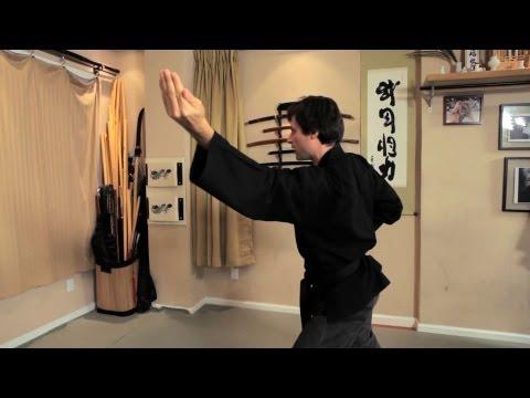 How to Do the Sui No Kata Technique   Ninjutsu Lessons