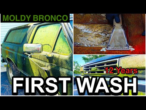 Disaster Barnyard Find | Extremely Moldy Bronco | First Wash In 12 Years | Car Detailing Restoration