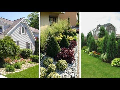 Живописные идеи дизайна сада вокруг дома