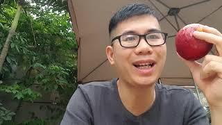 Sáng Nay Bạn Ăn Gì ? Health Coach Đàm Tấn Thành