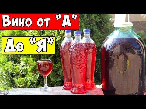 ВИНО из ВИНОГРАДА / Для НОВИЧКОВ - Самый Простой Рецепт / Домашнее Вино