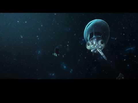 超自然現象?馬里亞納大海溝發現神秘生物,科學界至今無法解釋!
