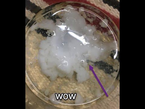 Magnesium Sulphate  Reaction With Sodium Aluminate (MgSO4 + NaAlO2)