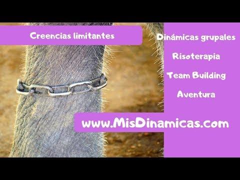 🐘Creencias limitantes #creencias #limitantes #psicologia