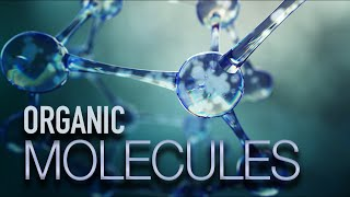 What You Need to Know About Organic Molecules