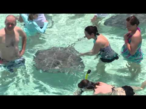 Stingray City Sandbar
