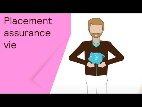Explication sur les supports d'investissement en assurance vie : fonds euros et unités de compte