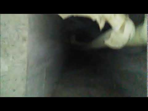 Mcdonald high school tunnels