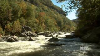 Traveling the Bluegrass | Kentucky Life | KET
