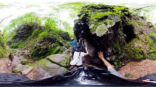 TAMA & SHIMA 360° VR ANIMAL VIEW_Japanese Bush Warbler