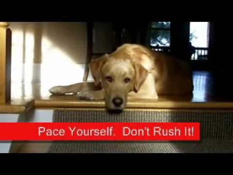 Pace Your Self.  Don't Rush Service.wmv