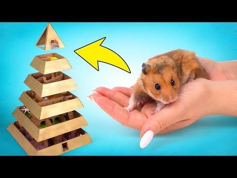 Un divertido laberinto - pirmide de 6 niveles para tu hamster