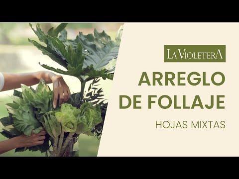como-hacer-un-arreglo-floral-con-follajes-florería-y-escuela-de-diseño-floral-la-violetera