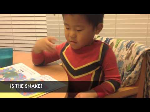 Deaf Child Early Reading ASL English