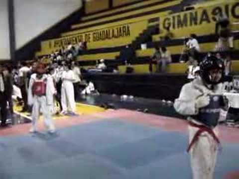 taekwondo punto de oro