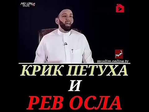 КРИК ПЕТУХА MP3 СКАЧАТЬ БЕСПЛАТНО