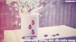 Valentine Chờ - Noo Phước Thịnh [Lyrics]