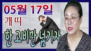 2020년 05월 17일 오늘의 운세 개띠 이 고비만 넘긴다면 즐거운 일이 다가온다 수미산당 구슬보살 010…